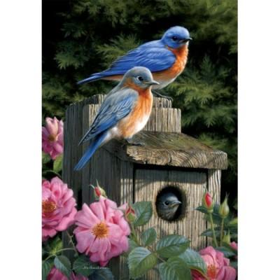 Maison d'oiseaux bleu