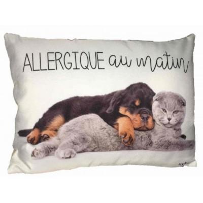 Coussin Allergique au matin