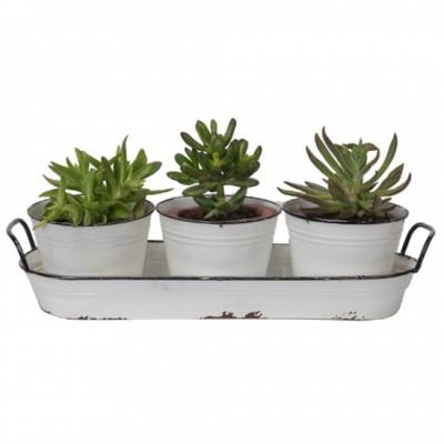 """17.75X6X3.25""""H Cabaret de métal -5.25""""DIAX4.25""""H. Avec 3 Pots de métal blanc, idéal pour plante  Succulente et Plante Grasse"""