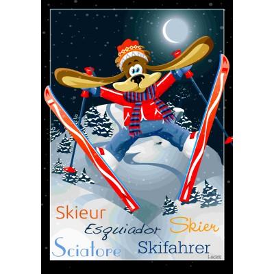 Drapeau décoratif 28 x 40 pouces, Le skieur