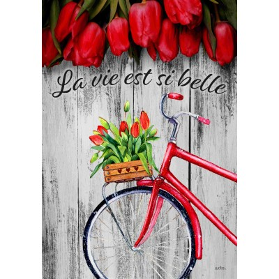 La vie si belle tulipe